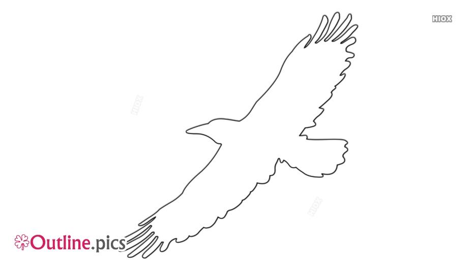 Bird Outline Flying