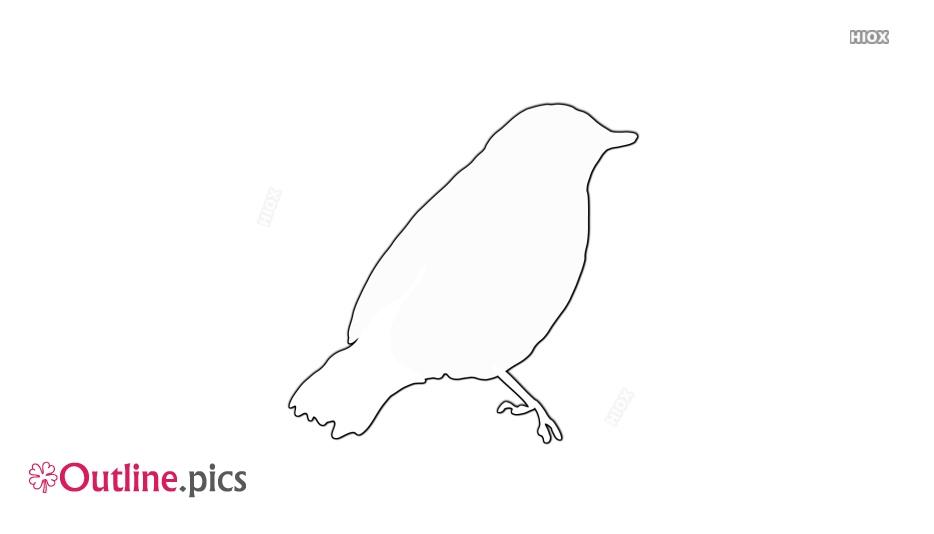 Black Bird Outline