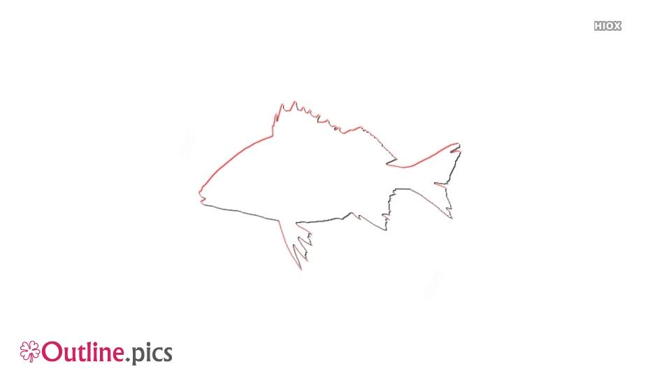 Cartoon Grunt Fish Outline