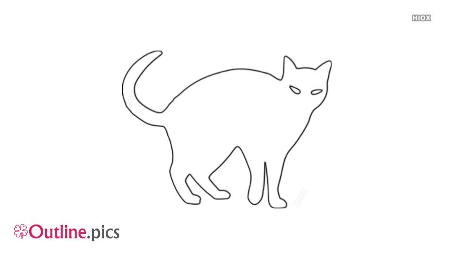 Cat Outline Photos