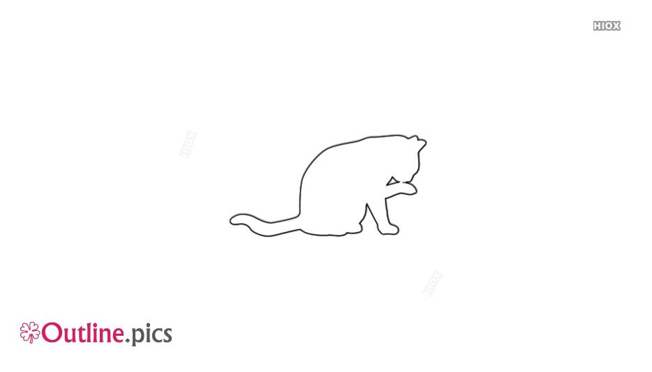 Cat Outline Pics