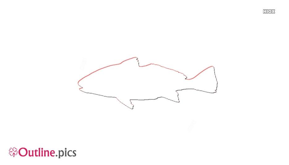 Croaker Fish Outline Design