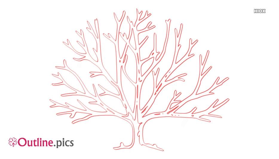 Dead Tree Outline