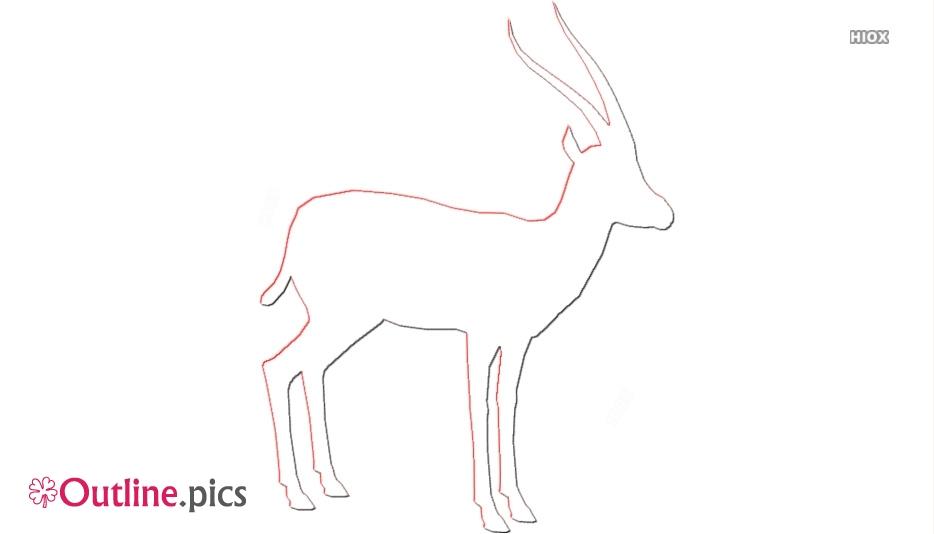 Dik Dik Animal Outline
