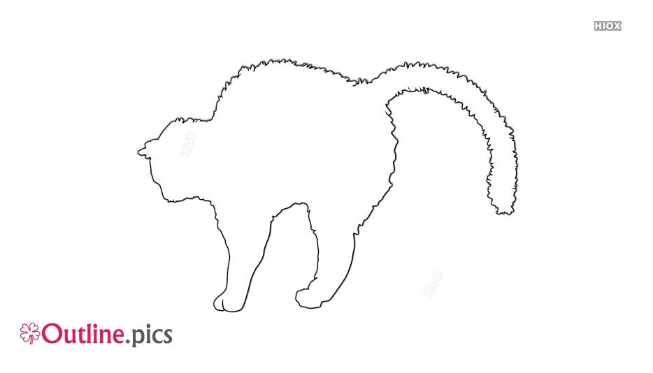 Fat Cat Drawing
