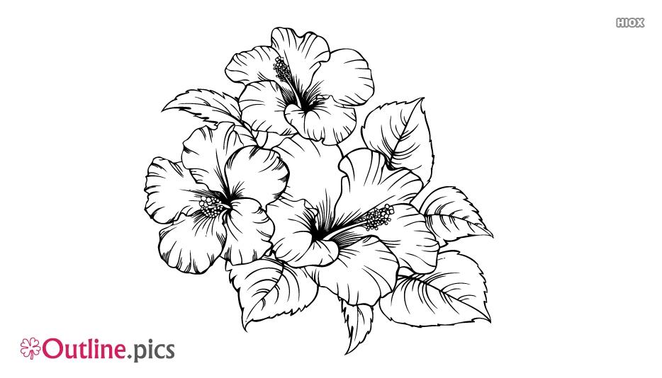 Flower Design Outline Vector