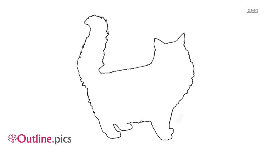 Fluffy Cat Outline