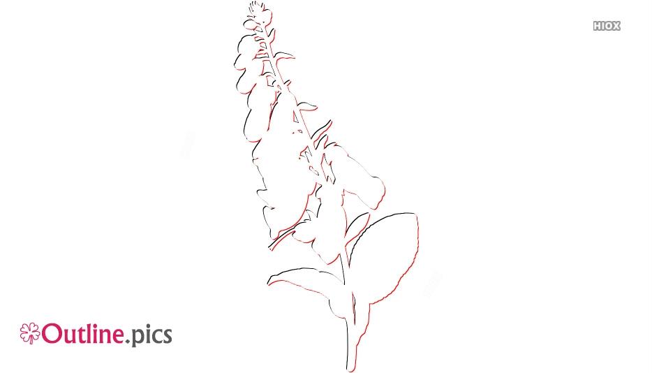 Foxglove Flower Outline Image