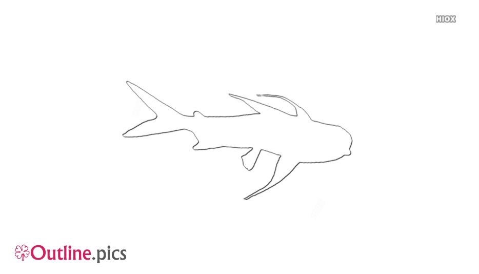 Gafftopsail Catfish Outline