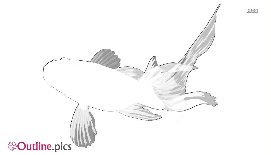 Goldfish Drawing Outline Illustration