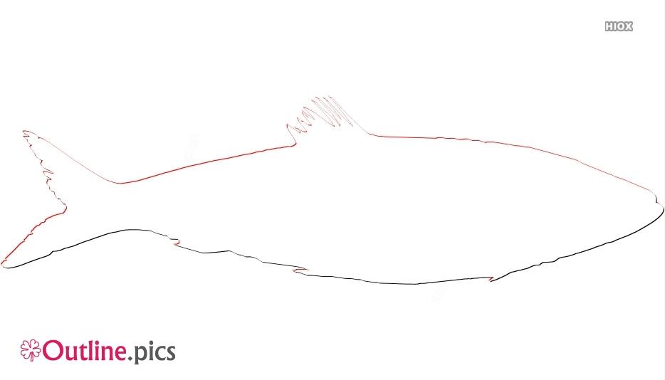 Herring Fish Outline Design