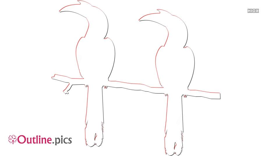 Hornbill Outline Vector