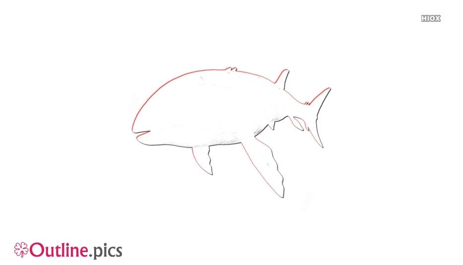 Ichthyosaurus Outline Background
