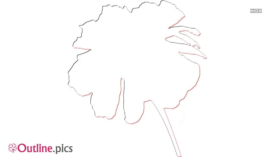 Marigold Drawing Outline Image