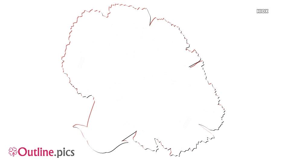 Outline Of Carnation Flower