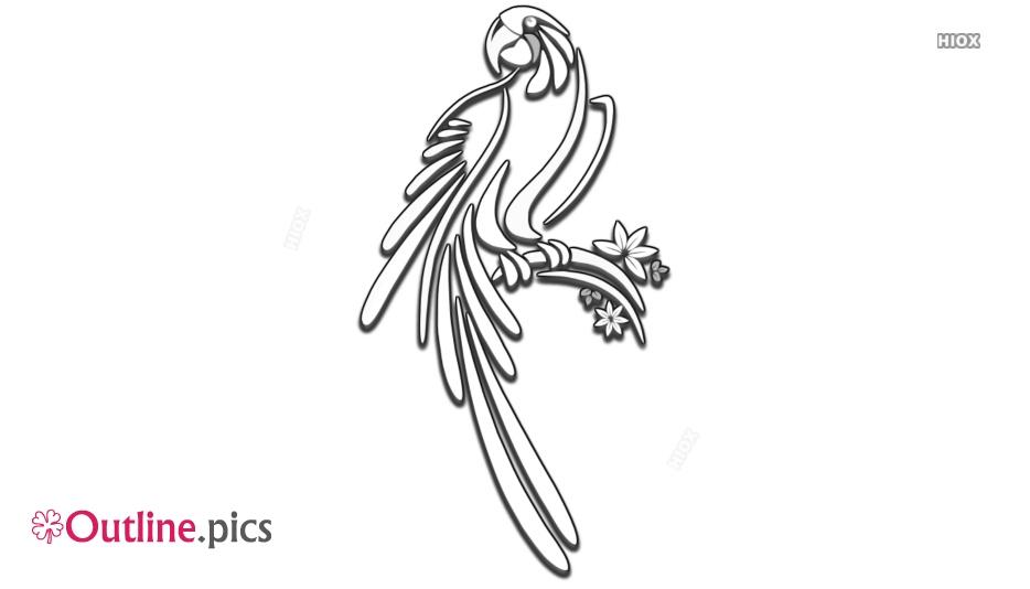 Outline Sketch Of Parrot