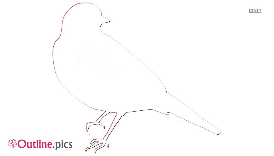 Robin Clipart Pencil Drawing