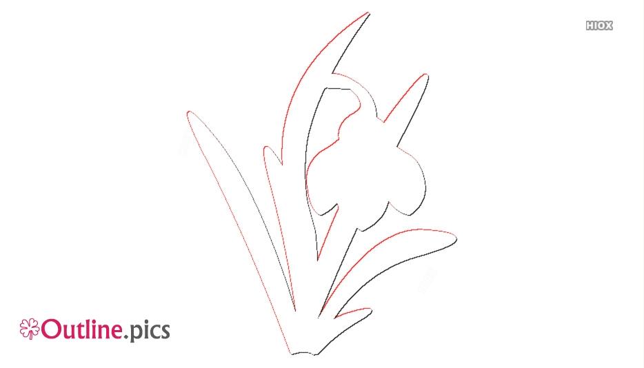 Snowdrop Flower Clipart || Galanthus Outline Image