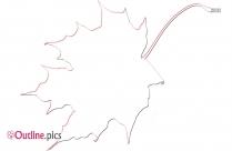Walnut Leaf Outline Image And Vector