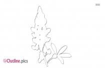 Flower Vase Outline Clip Art
