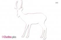 Deer Vector Outline Image