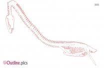 Dinosaur Train Elasmosaurus Outline
