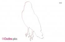 Cardinal Bird Clipart