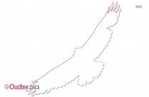 Cartoon Kiwi Bird Outline Vector