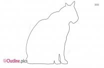 Kitten Outline Images