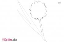 Black And White Carnation Flower Outline