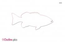 Grouper Fish Outline Art