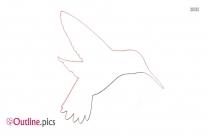 Hummingbird Outline Drawing Vector