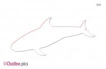 Sperm Whale Vector Outline