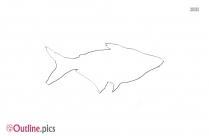 Lubina Fish Outline Background