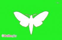 Moth Outline