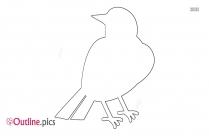 Bird Body Outline