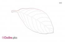 CM Leaf ClipArt Outline