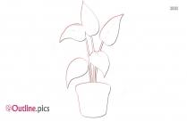 Pot Plant Flowering Outline Image