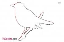 Robin Clipart Bird Pencil Drawing