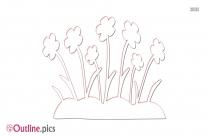 Daisy Flower Outline Design