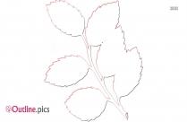 Summer Leaves Clip Art Outline