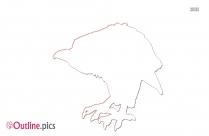 Cartoon Kiwi Bird Outline